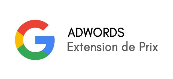 Présentation : Les extensions de prix sur AdWords
