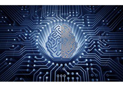 DSA et Smart Bidding, ou comment tirer le maximum de l'automatisation sur Google Ads ?